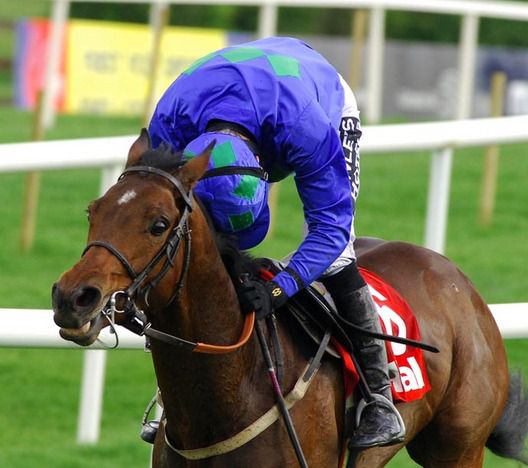 Hurricane Fly is in action at Punchestown this afternoon