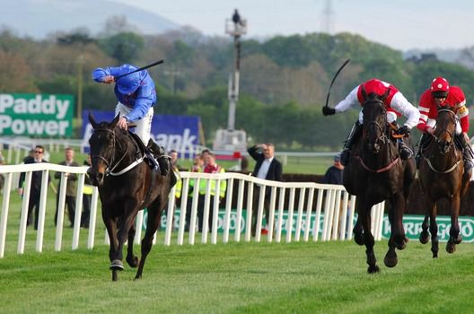 Rare Bob (left) pictured winning at Punchestown in 2009