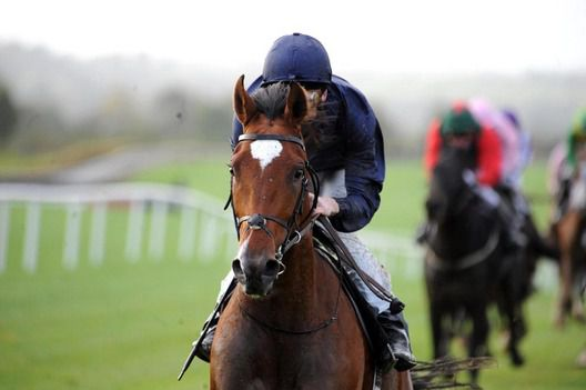 Flying Crosss pictured winning at Navan in 2009