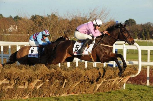 Solwhit winning the 2010 Toshiba Irish Champion Hurdle at Leopardstown