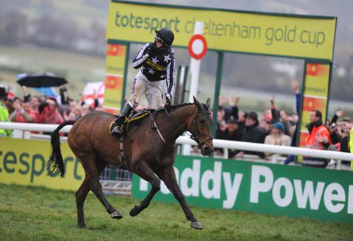 Imperial Commander seen here winning the Cheltenham Gold Cup