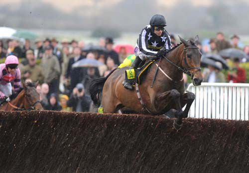 Imperial Commander on his way to winning the Gold Cup in 2010