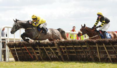 Day Of Destiny seen here winning at Fairyhouse under Philip Enright