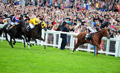 Starspangledbanner on his way to victory in the 2010 Diamond Jubilee Stakes at Royal Ascot