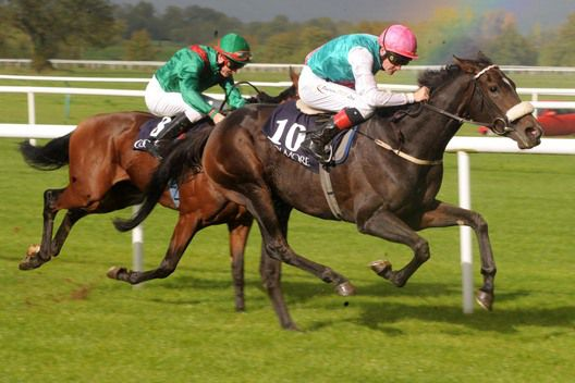 Emulous finished sixth in the Matriarch Stakes