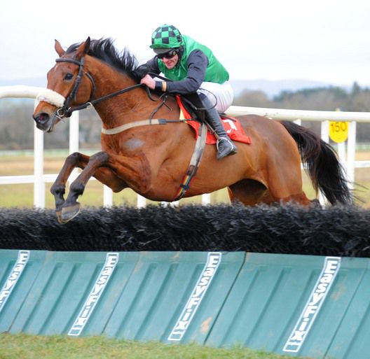 Knockfierna in action over hurdles at Limerick