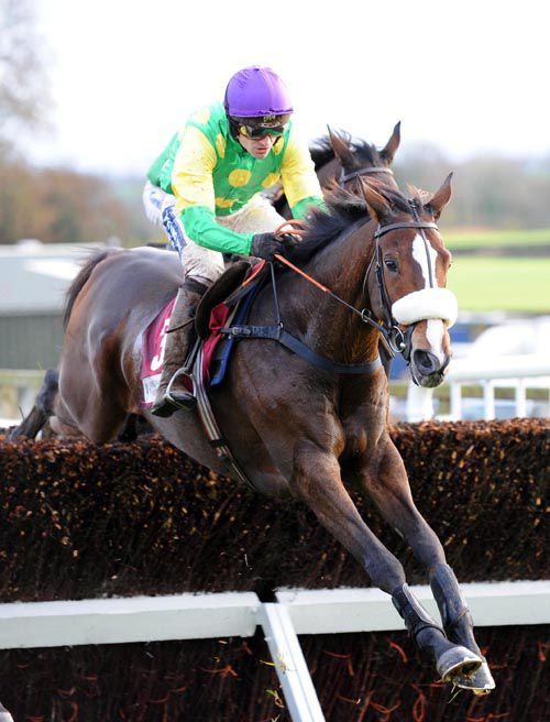 Kauto Star in action