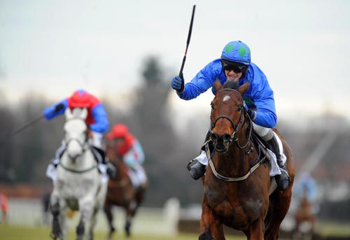 Hurricane Fly, hot favourite for the Grade 1 feature