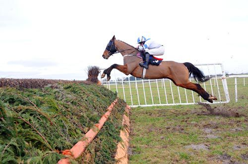 In Compliance in action at Thurles last year