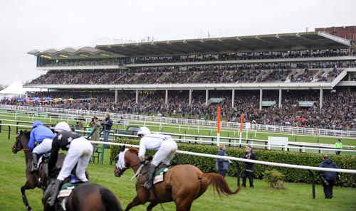 Packed stands guaranteed at Cheltenham