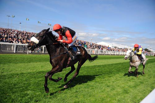 Grand Crus seen here finishing second to Big Buck at Aintree in 2011
