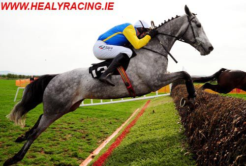 Simonsig in his pointing days