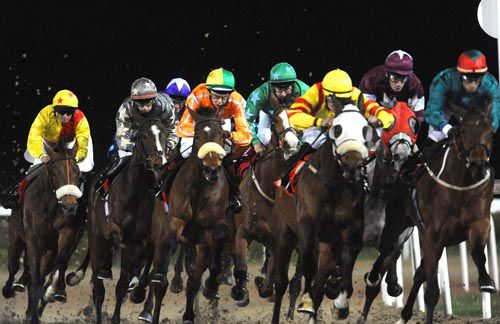Racing at Dundalk