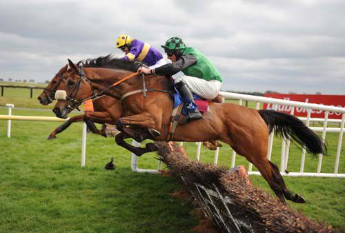 Knockfiernia in action at Fairyhouse last year
