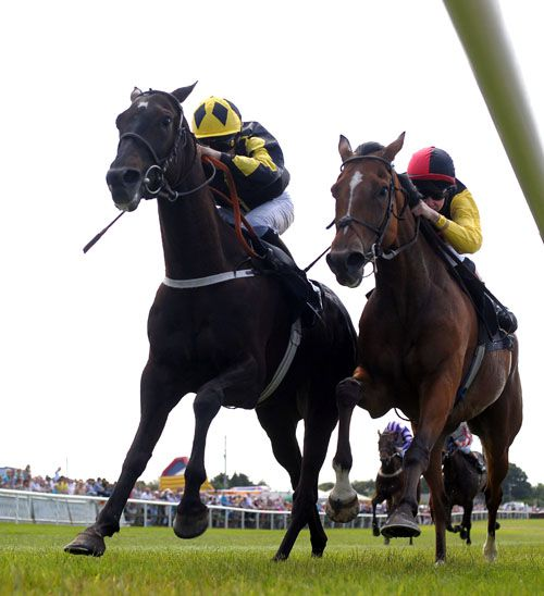 Action Master and Niall McCullagh (left) just get up to win