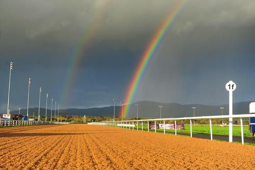 All-weather action today at Lingfield and Kempton