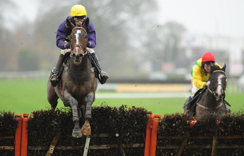 Lord Windermere pictured beating Aupcharlie over hurdles at Thurles