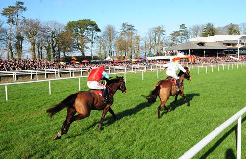Zaidpour seen here beating Voler La Vedette at Gowran