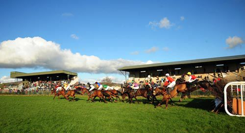 Tralee point-to-point abandoned