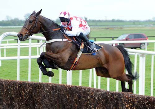 Flemenstar in action at Fairyhouse last year