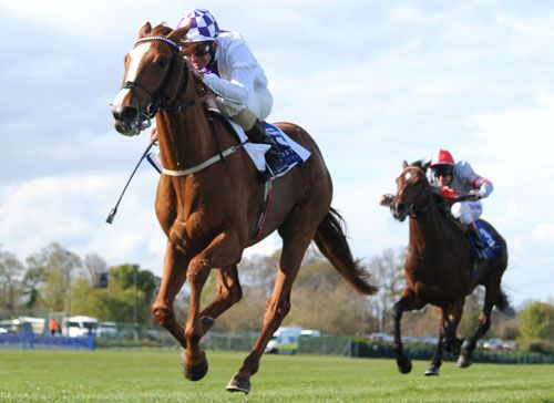 Light Heavy and Kevin Manning come home clear at Leopardstown