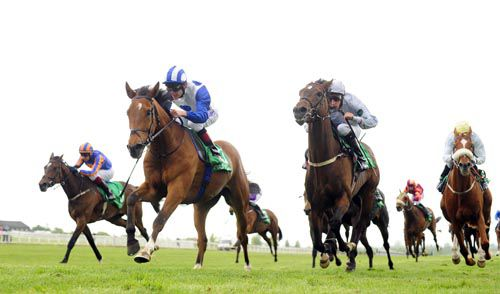 Kashmir Peak (blue & white) pictured winning at Navan in May when trained by Ger Lyons