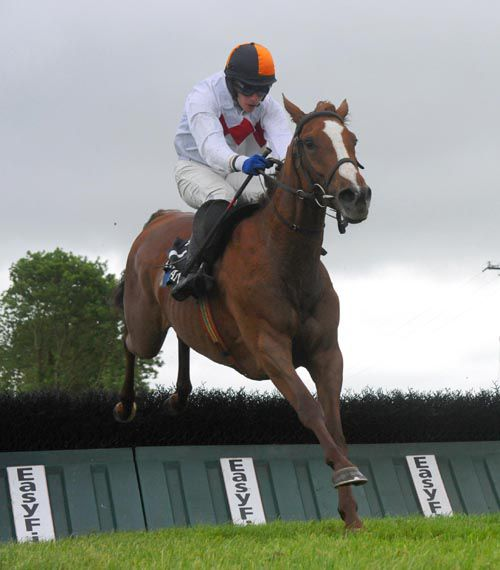 irishracing com | News - White Feathers on road to Galway