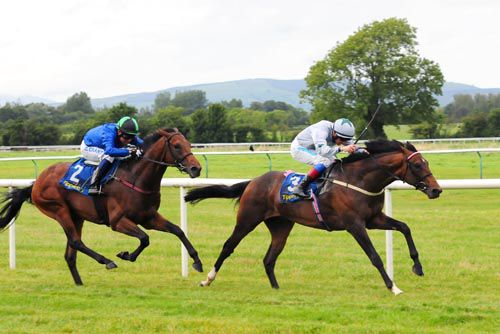Sugar Boy pictured on his way to victory at Tipperary last year