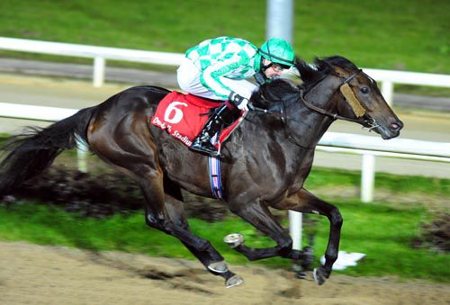 Lines Of Battle pictured on his way to victory at Dundalk last year