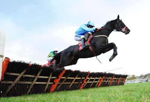 The Tom Mullins trained King Of Queens is up ten pounds for his win at Fairyhouse on Saturday