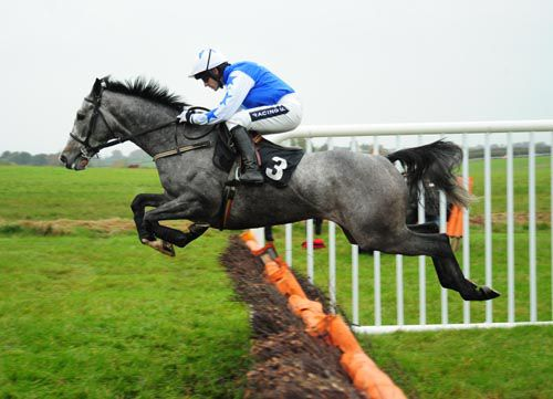 Pique Sous winning at Thurles