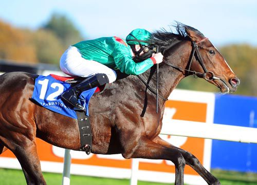 Zand opens his account at Leopardstown last autumn