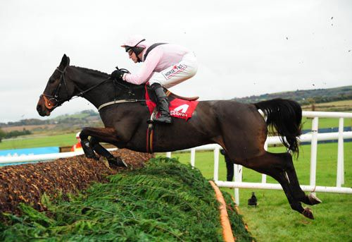 Oscars Well pictured winning his beginners chase at Punchestown