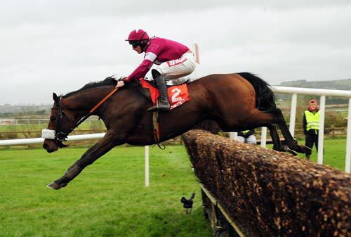 Dedigout and Davy Russell