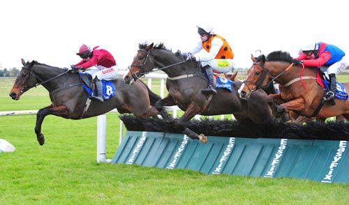Aladdins Cave (nearside) comes to claim Shesonlyahorse with See Double You (centre)