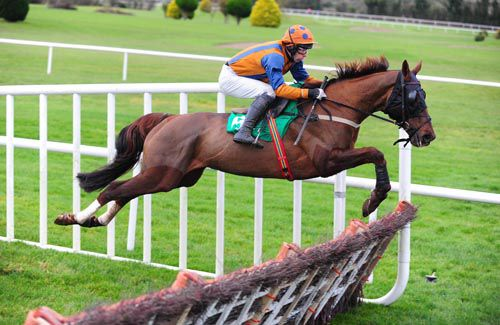 Whatuthink flies over a hurdle on his way to victory under Tom Doyle