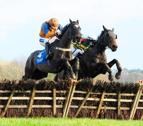 Quietly Fancied (nearside) beat Harold's Cross at Clonmel