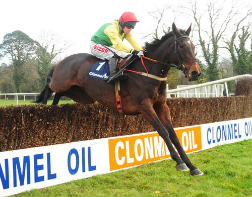 Sizing Europe and Andrew Lynch in winning action at Clonmel last month