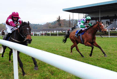 Hawaii Five Nil (right) grabs Turnandgo on the line at Clonmel