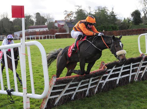 Money Spider gets in too close to the last but still won easily under Sean McDermott at Punchestown