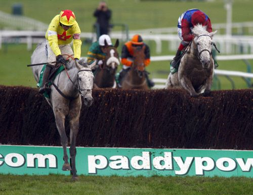 Al Ferof (left) pictured winning the Paddy Power at Cheltenham recently