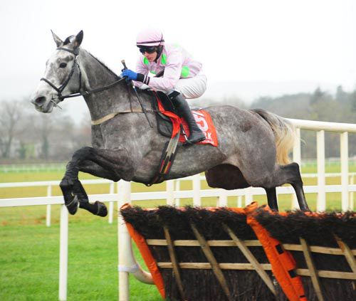 Champagne Fever soars over a hurdle at Cork