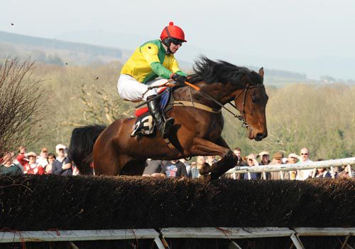 Rock Me John wins his point-to-point under Mark Slevin at the scenic Monksgrange