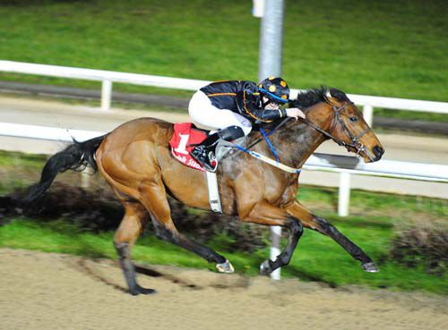 Abstraction and Ronan Whelan winning for trainer Sarah Dawson
