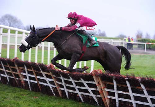 Don Cossack jumps the last under Davy Russell