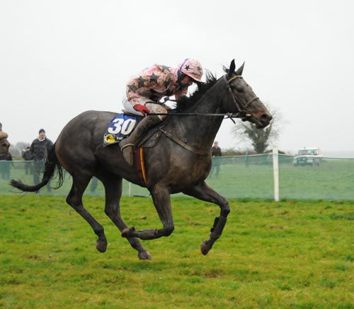 She had luck on her side but Treacy's Star got Martin Molloy off the mark at Boulta on Sunday