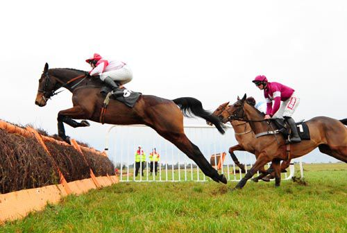 Bishopsfurze jumps a hurdle in front of Becauseicouldntsee (partially hidden) & Folsom Blue