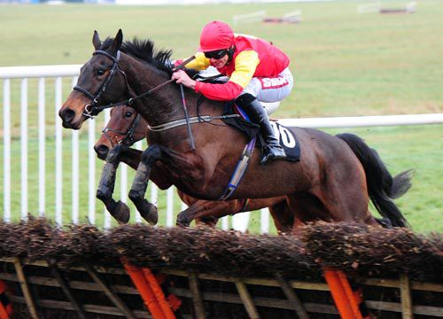 Lough Roe Lady jumps a hurdle on her way to victory under Davy Russell
