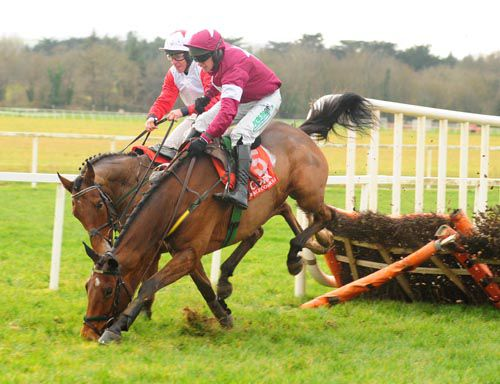 Road To Riches blunders at the last at Cork