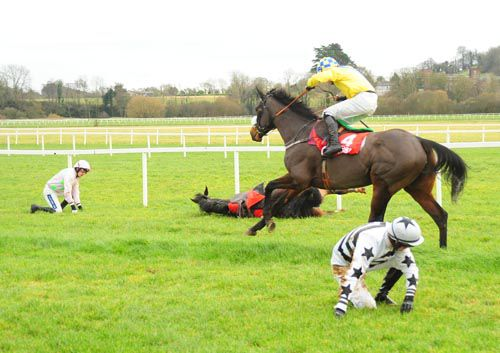 Great Oak passes the fallers after the last at Cork